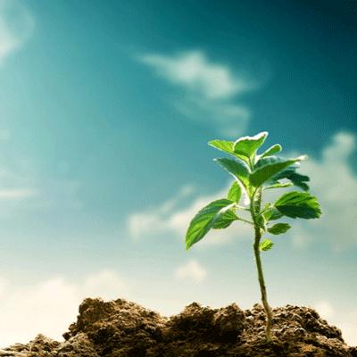 希望の塊としての働き方改革関連法成立